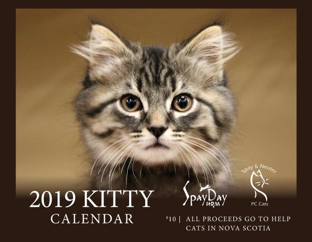 cat calendar f_cover Aug_2018