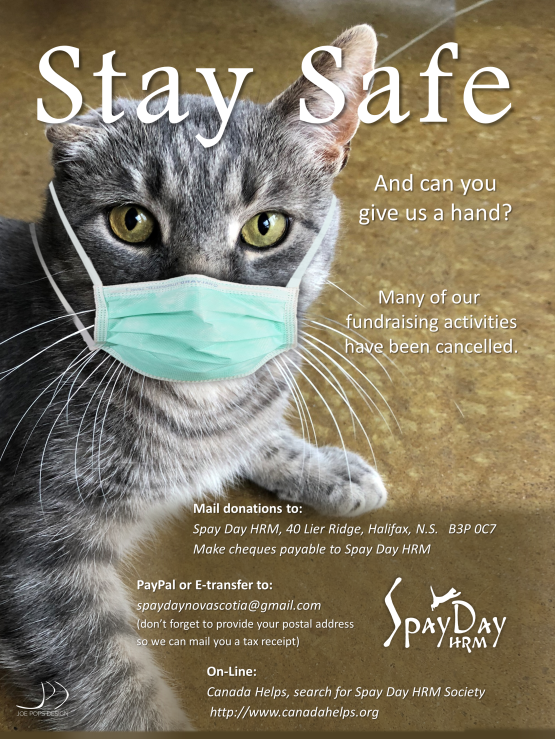 Stay safe poster1